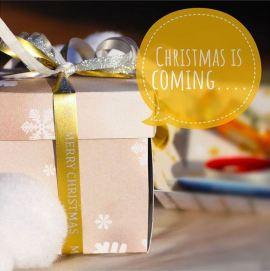 @nat_beauty_box - Christmas is Coming